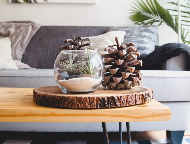 A pinecone on a table for the ultimate interior design tip